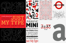 Just My Type – About the book
