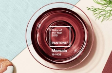 Marsala – Pantone Color of the Year 2015
